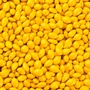 Golden Yellow Chocolate Covered Sunflower Seeds