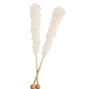 White Rock Candy Crystal Sticks - Natural
