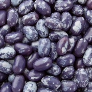 Jelly Belly Blue Speckled Jelly Beans - Plum