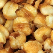 Jumbo Toasted Salted Corn Nuts