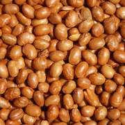 Roasted Salted Soy Nuts
