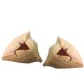 Gluten-Free Raspberry Hamantashen (Hamantaschen)