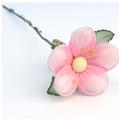 Baby Pink Jordan Almond Flower with Stem