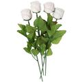 White Milk Chocolate Long Stem Roses - 6-Pack