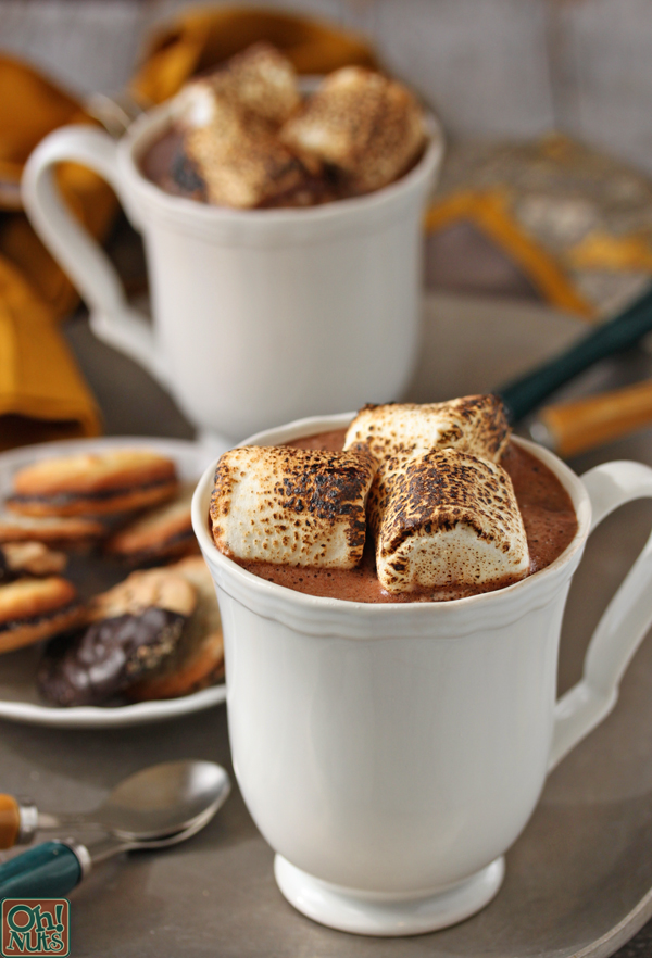 toasted marshmallow hot chocolate isn t just plain hot chocolate