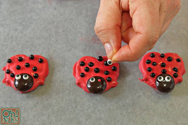 Pretzel Ladybugs | From OhNuts.com